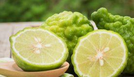 Proprietà del bergamotto: tutti i benefici sul suo utilizzo